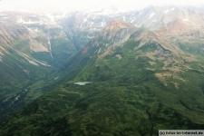 Ausflug mit Alaska Bear Adventures in die Hallo Bay im Katmai NP zu den großen Küsten Braunbären