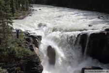 Icefields Parkway Sunwapta Falls