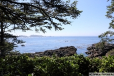 Ucluelet-Wild-Pacific-Trail-3
