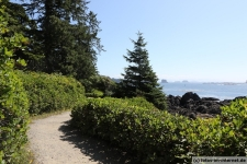 Ulcluelet-Wild-Pacific-Trail-1