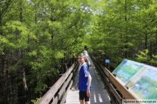 Boardwalk im Six Mile Cypress Slough Preserve in Florida