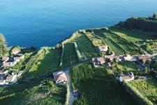 Azoren: Ferienhaus auf Sao Miguel, Ponta Garca