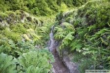 Azoren Wanderung: Cete-Cidades