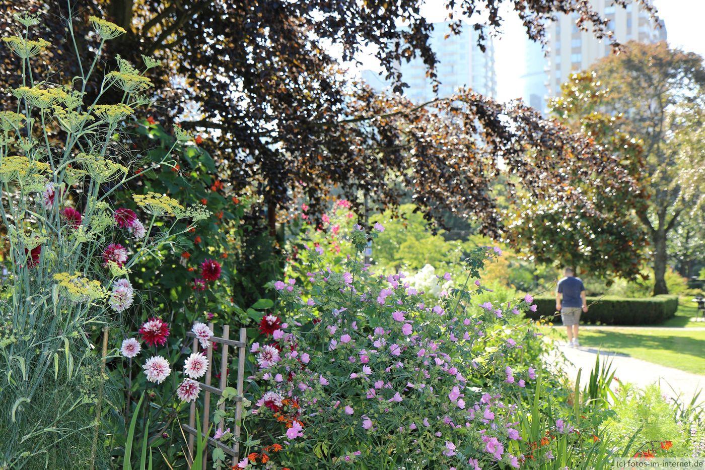 Vancouver: Blumengarten