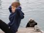 Alaska: Wildlife Tour in Seward
